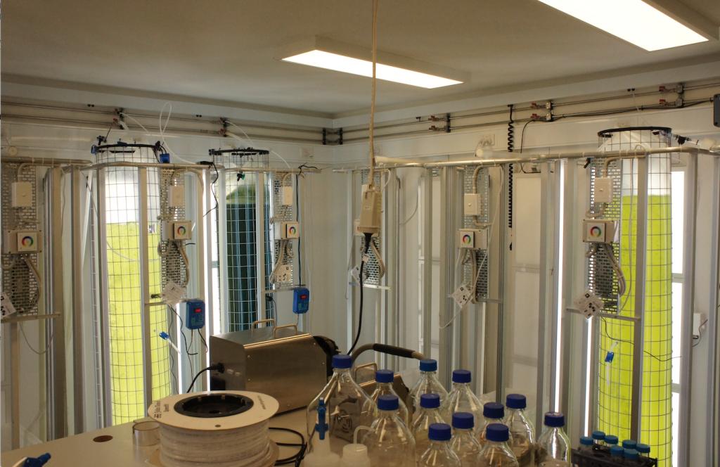(c) UQ IMB Solar Biofuels Research Centre_1